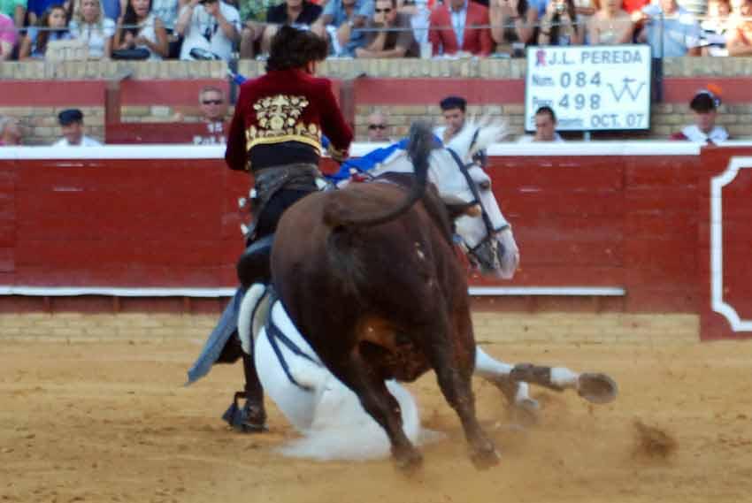 El toro de Pereda le sigue.