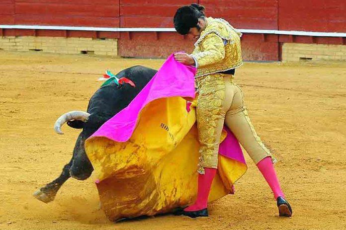 Premiado este toreo de capote de Morante. (FOTO: Vicente Medero)