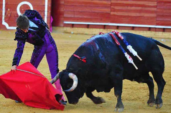 Muletazo de El Juli en La Merced el pasado sábado. (FOTO: Vicente Medero)