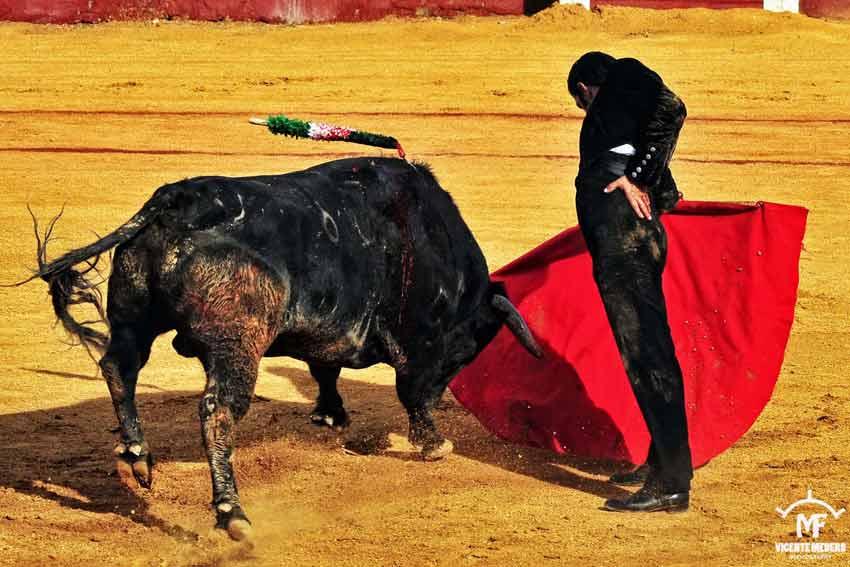 Curro Escarcena.