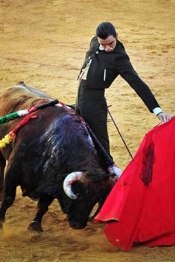 José Luis Torres, que ha cortado un rabo, ha sido el triunfador del festival benéfico. (FOTO: Vicente Medero)