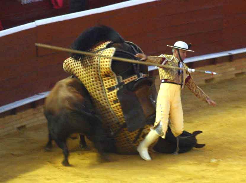 La caída fue aparatosa, sobre el cuello del caballo.