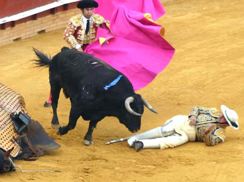 El picador de Morante de la Puebla quedó en el ruedo a merced de las astas del toro de Jandilla.