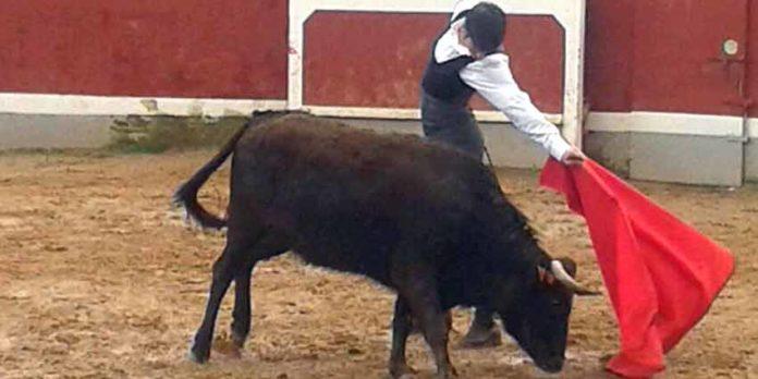 Emilio Silvera toreando en el Bolsín de Ciudad Rodrigo el pasado fin de semana.
