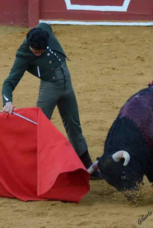 Oliva Soto durante su faena. (FOTO: Gilberto)