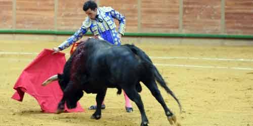 El onubense David de Miranda, hoy domingo en Arnedo.